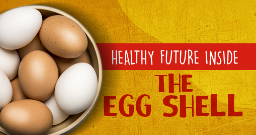 Healthy future inside the Egg Shell