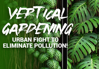 Vertical Gardening - Urban fight to eliminate pollution!