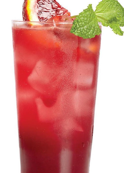What's summer without these super cool mocktails!